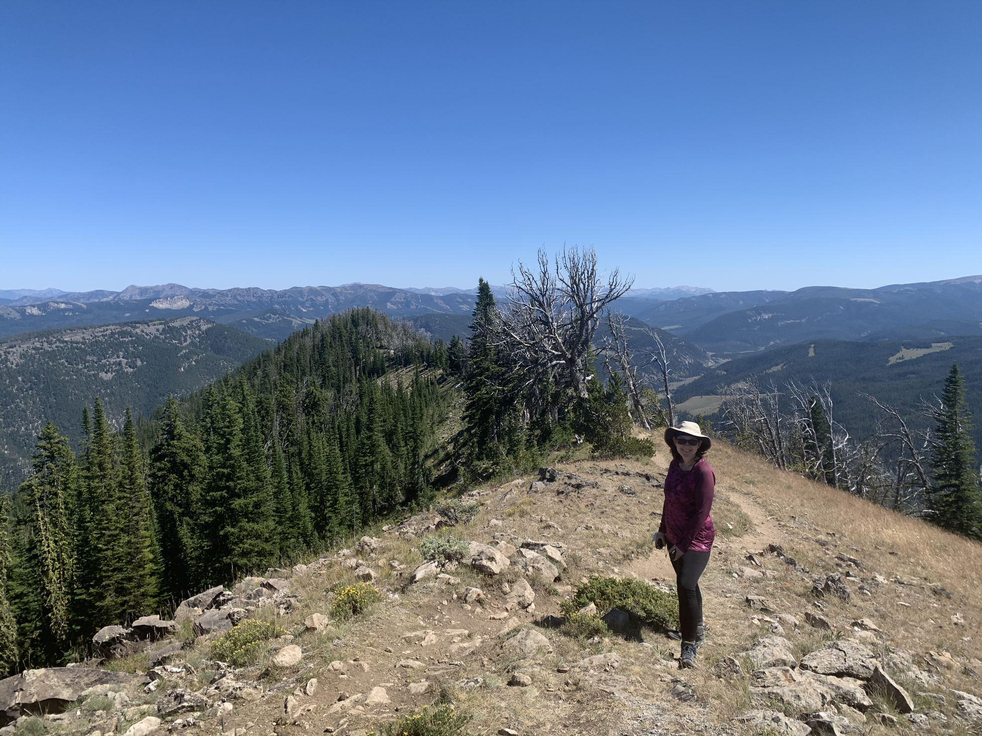 Mount Cinnamon