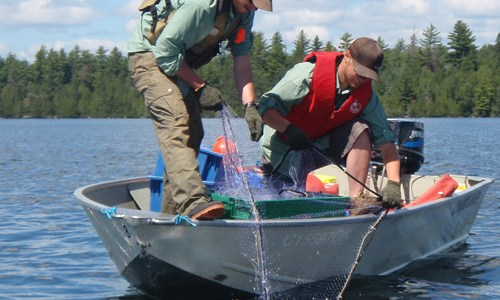 Lake Surveys Manage Fisheries in Northwest Region