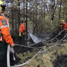 Fighting last summer's wildfires cost $212M, but province saying little else Social Sharing