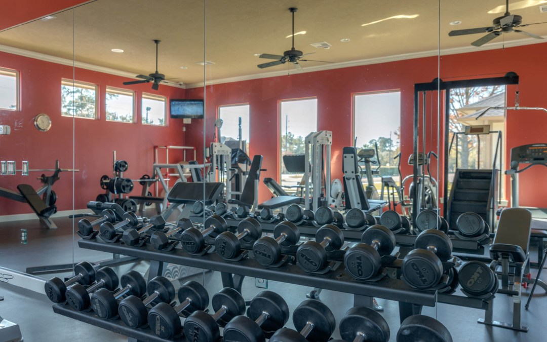 Rules of the Gym