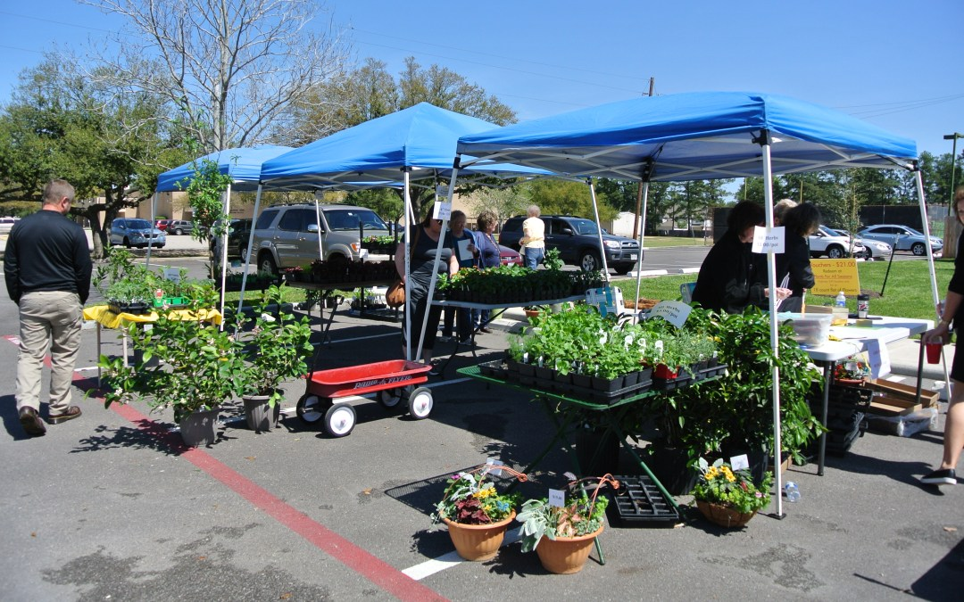 MNW LADYBUGS GARDEN CLUB  ANNUAL PLANT SALE