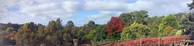 botanic garden panarama