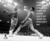 Muhammad-Ali quotes