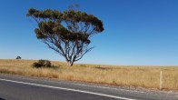 Princes Highway towards the Meningie, South Australia