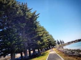 Robe Beach (4)
