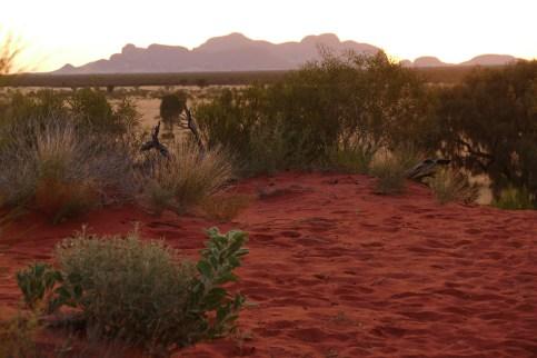 Contrast of colors around semi-arid Uluru-Kata Tjuta