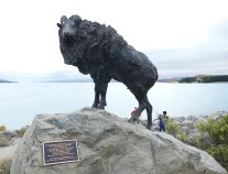 The Tahr Statue at Hooker Lake, Mount Cook
