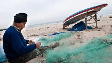 Photo of الإعلان عن بدء تحديث بيانات الصيادين