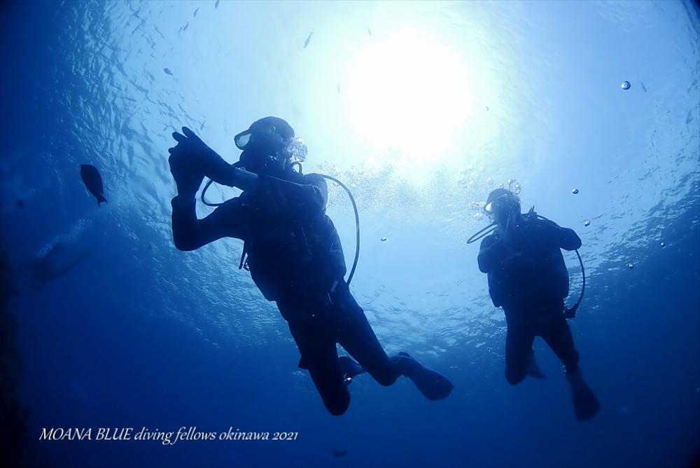 沖縄体験ダイビング体験|恩納村真栄田岬