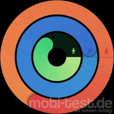 Mobvoi Ticwatch Pro Test Watchface (1)