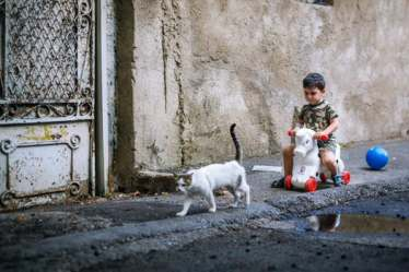 humanities-kitty-play-child