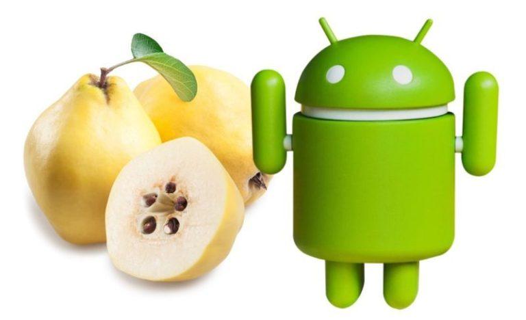 Google kan ha läckt det fullständiga namnet för Android Q