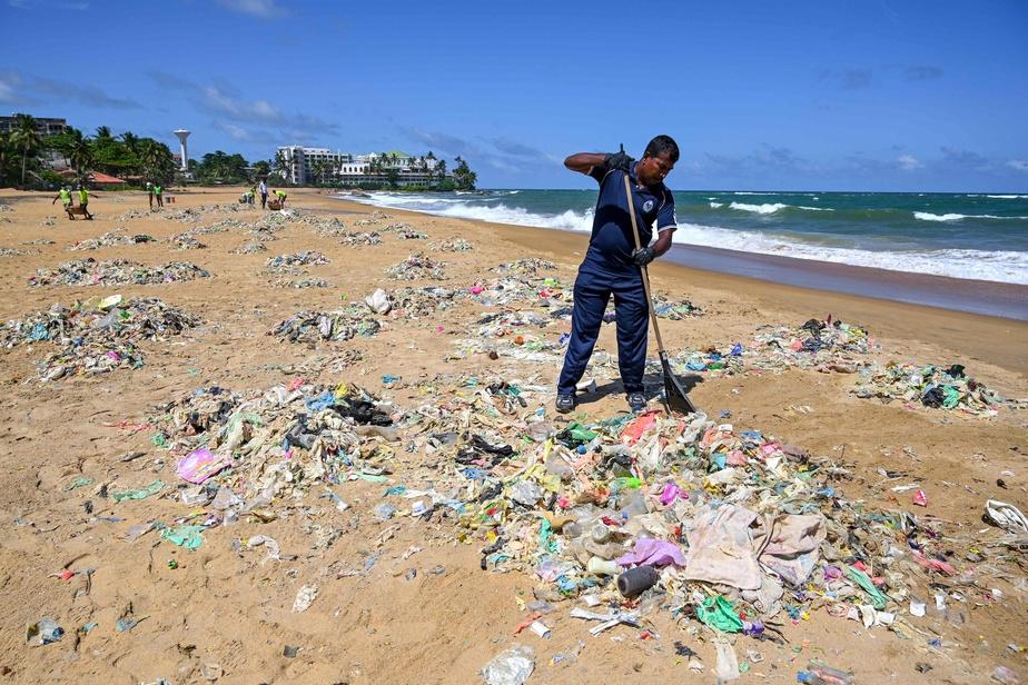 Il est encore temps de sauver les océans, insiste Philippe Cousteau