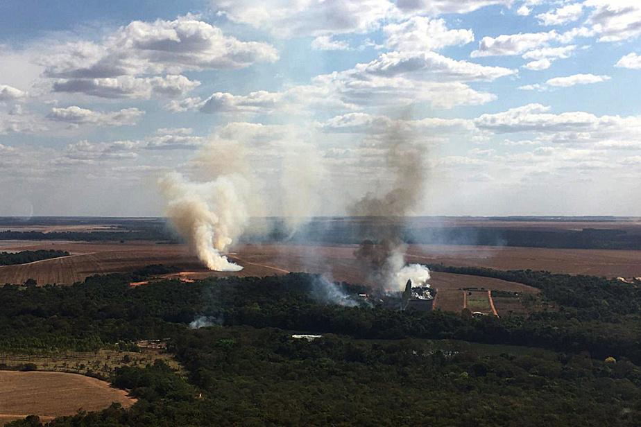 Brésil: record d'incendies en juillet au Pantanal