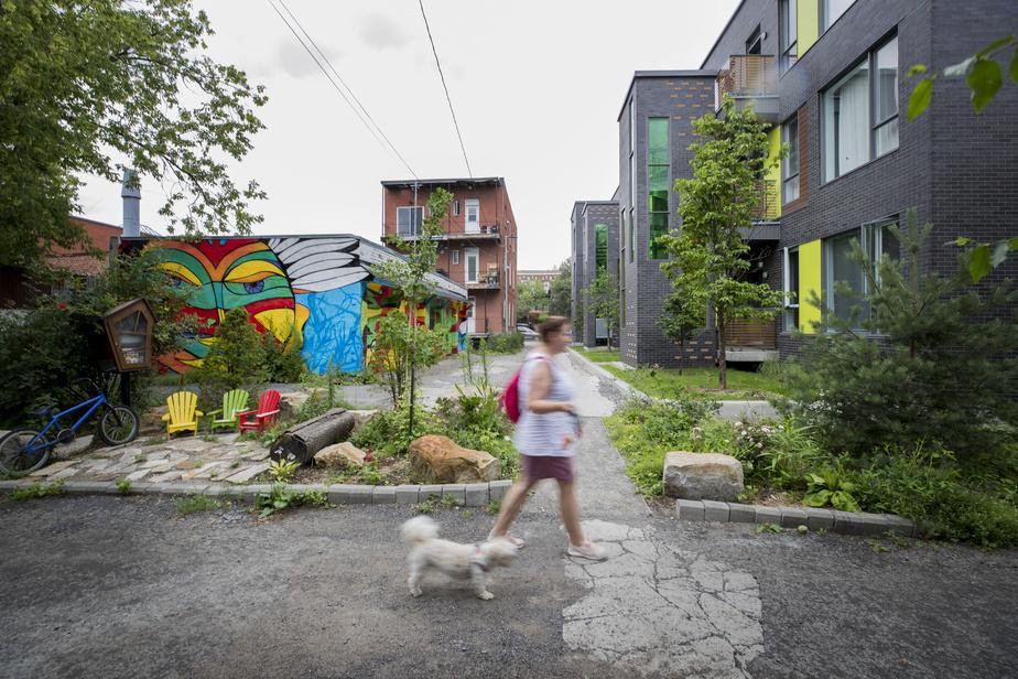 En pleine pandémie, les ruelles vertes se multiplient àMontréal