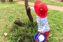 A boy collecting eggs during an Easter egg hunt