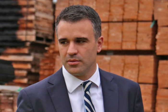 Labor MP Peter Malinauskas.