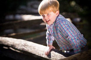 A little boy on a split-rail fence