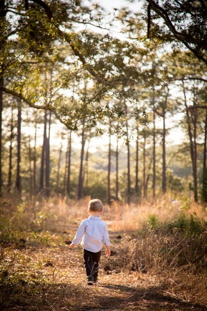 Toddler takes a walk in the forest
