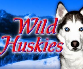 Wild Huskies Slots at spin and win
