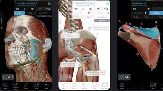 Human Anatomy Atlas Premium MOD APK