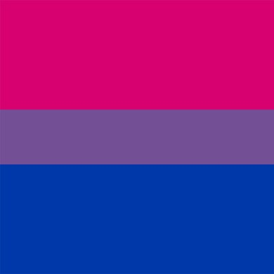 the bisexual flag - One of many bi pride rainbow or LGBT symbols on this page