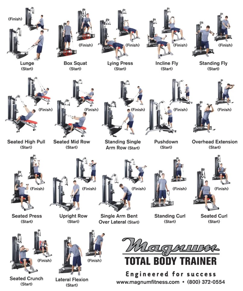 York Dumbbell Exercise Programme: Total Gym Full Body Workout Routine Pdf