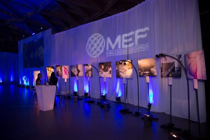 MEF (99)