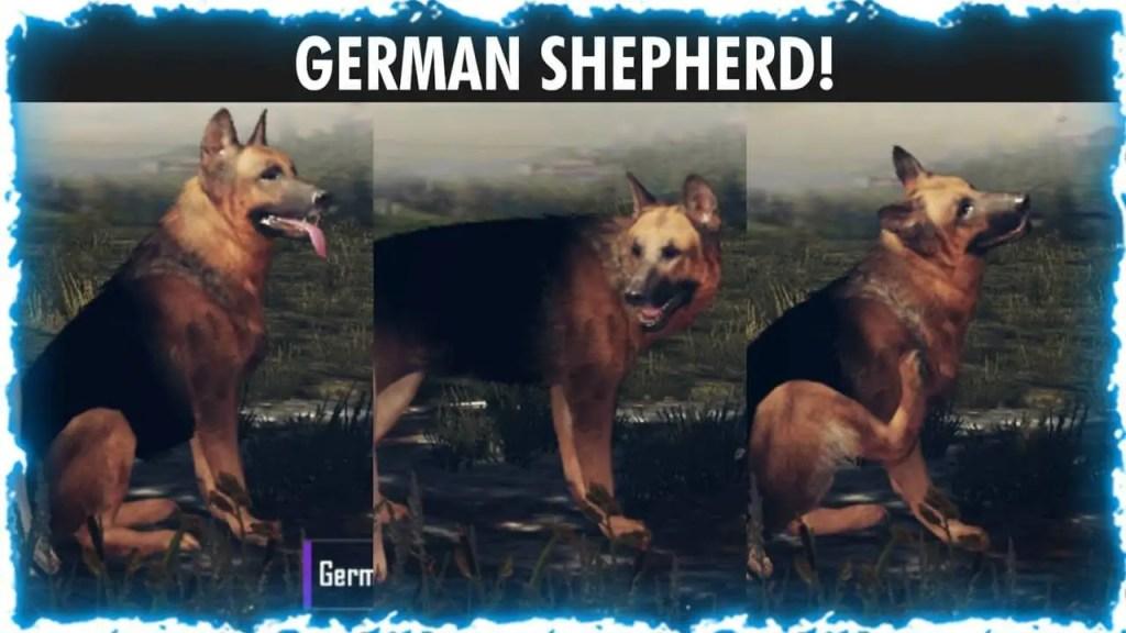 pubg bgmi german shepherd ss