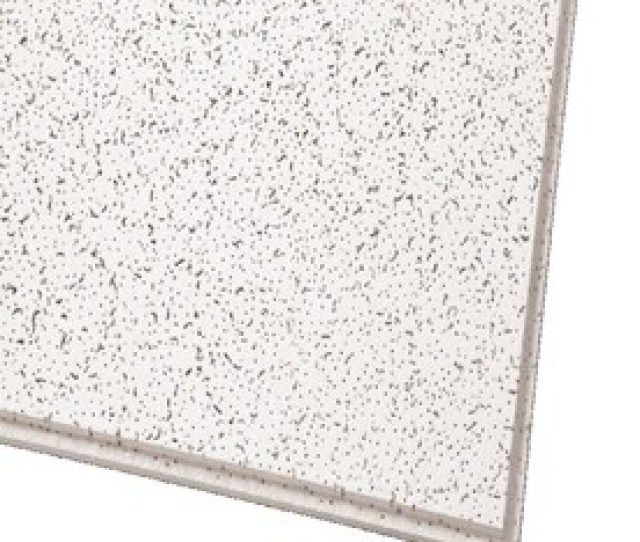 Armstrong Ceilings Common 24 In X 24 In Actual 23 745