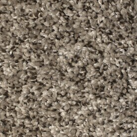 Shop Carpet at Lowes com STAINMASTER Essentials Notorious Gaucho 12 ft W x Cut to Length Gaucho  Textured