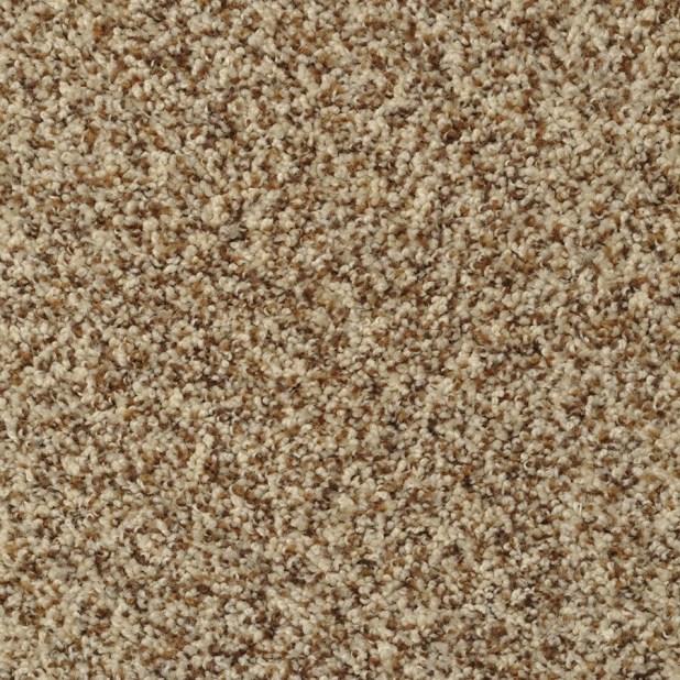 Stainmaster Carpet Color Samples Www Stkittsvilla Com