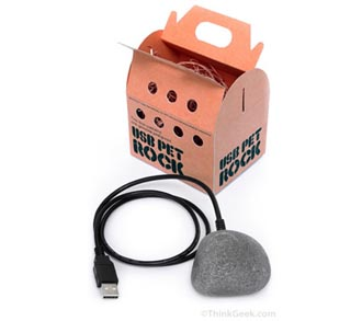 petrock USB Pet Rock Just as Useless as Non-USB Version