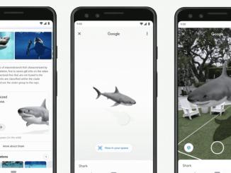 Google shark
