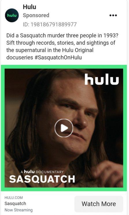 Hulu documentary ad
