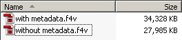 file size with and with out metadata