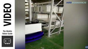 Image of Hai Robotics Double Deep ACR System HAIPICK A42D