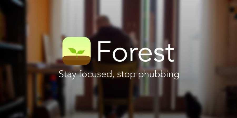 Forest: Stay focused – teraz łatwiej się skupić