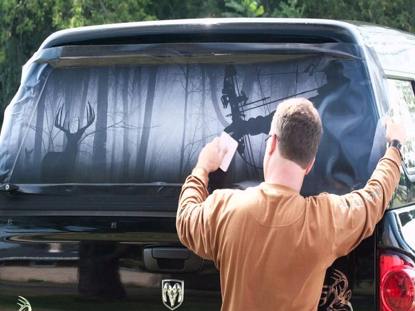 Creative Window Tints That You Should Try Now