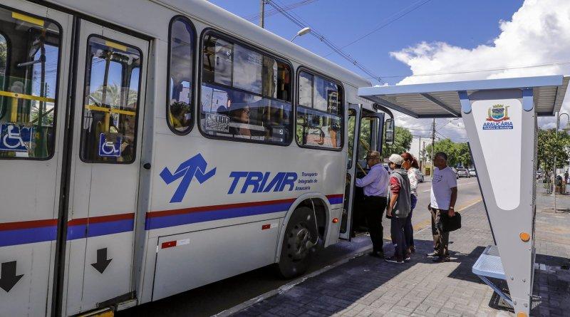 Ônibus Araucária
