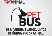 SP Animal