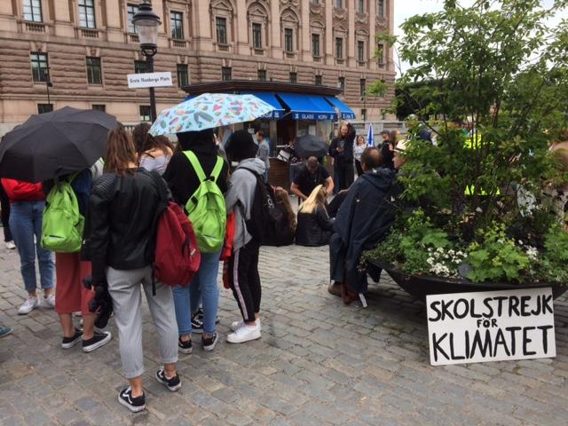 Skolstrejk för Klimatet - in front of the Swedish Parliament in Stockholm