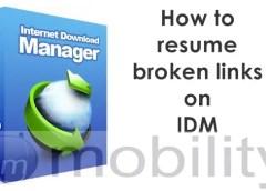 Internet Download Manager hit2k