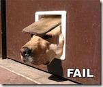 dogdoorfail