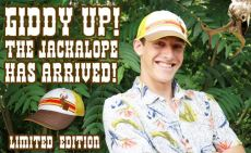 jackalope hat headsweats
