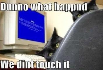 lol-cat-puter