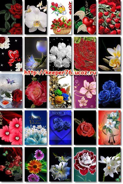 Цветы 240 320 - Сборники анимированных картинок, gif ...