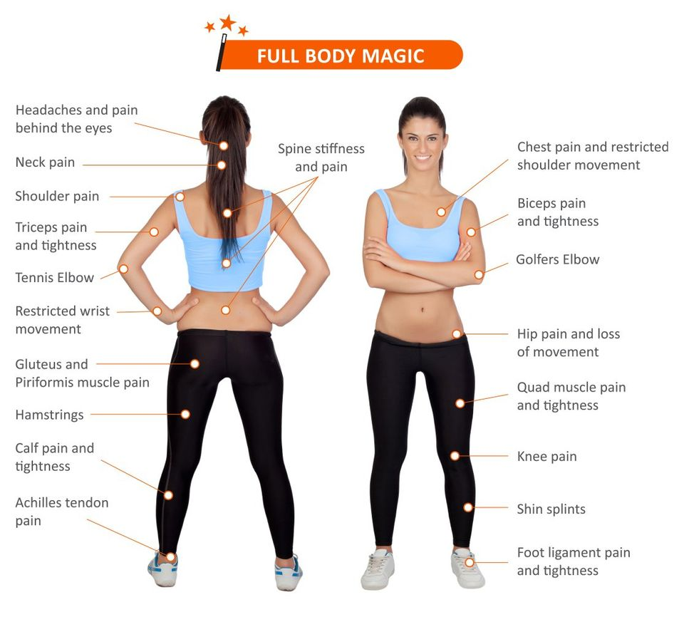 The Infographic shows the 18 major regions of the body that the MMTool works