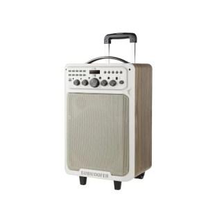Bluetooth zvucnik Retro D19