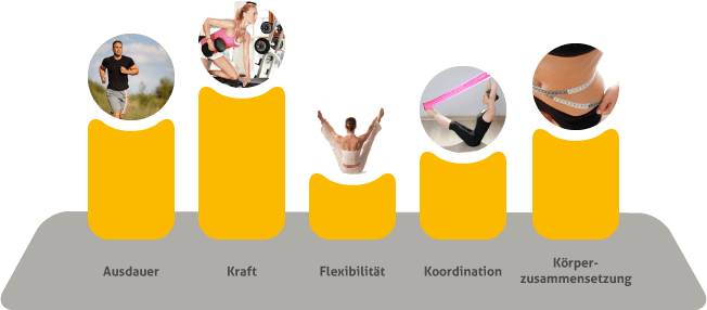 Die 5 Dimensionen der körperlichen Fitness